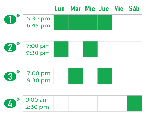 Evening and Saturday Hansa Schedule options. Clases Nocturnas Tiempo Completo o Parcial.